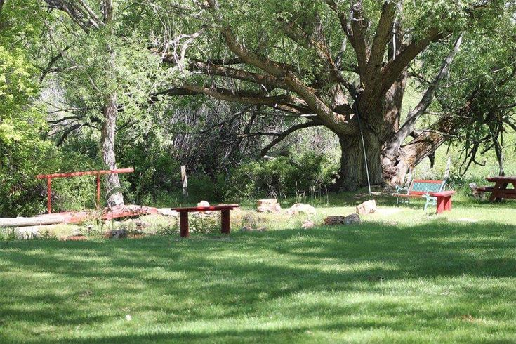 12 Best Nevada Campgrounds Images On Pinterest Passport