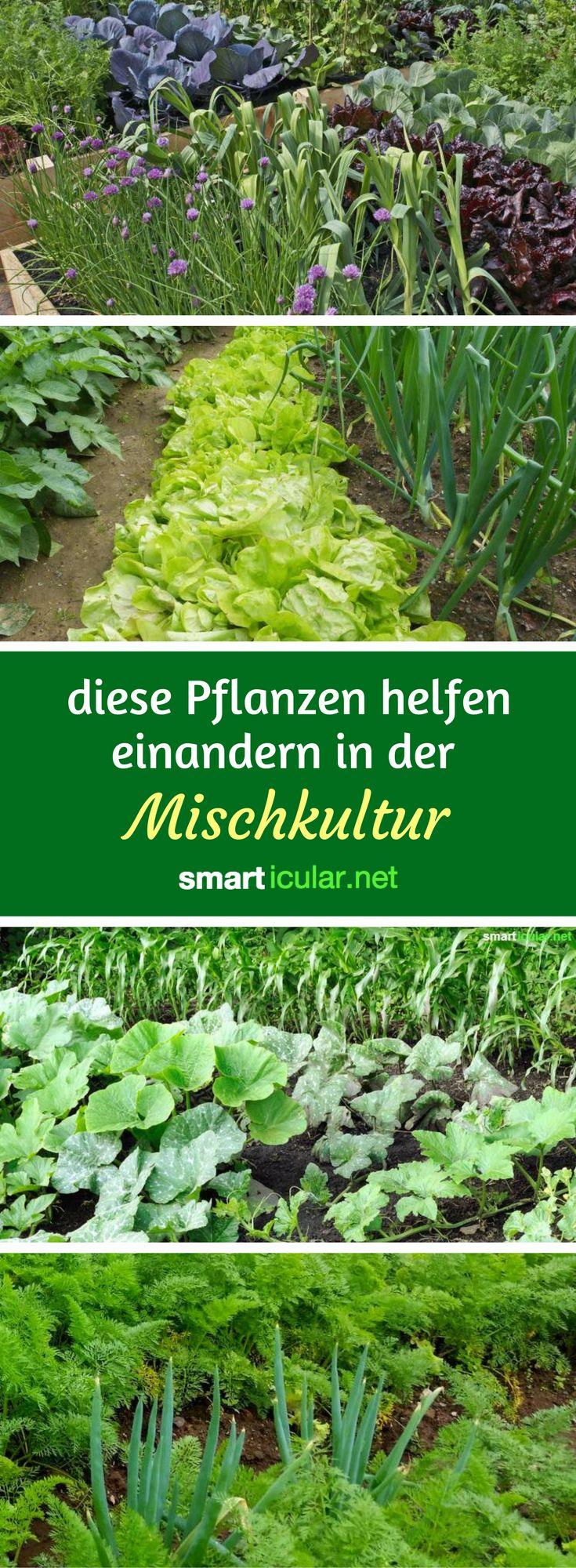 Design#5001629: 25+ best ideas about garten on pinterest | buy tools, tool rack .... Dunger Fur Den Garten Pflanzen Kuche