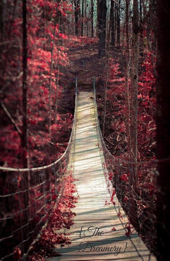 "Nature Photography landscape art surreal red decor romantic gothic moody dreamy valentines gift mysterious magical bridge - ""Enchantment"""