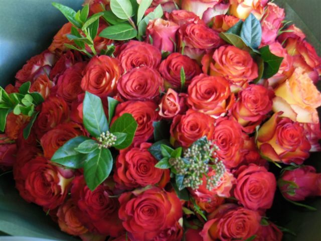 Red/Orange roses with greenery