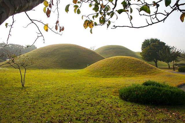 7 best images about landscape mounds on pinterest for Mounding grass