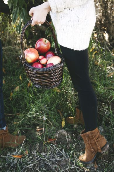 Minnetonka Moccasin Mesa Boot, perfect for picking apples!