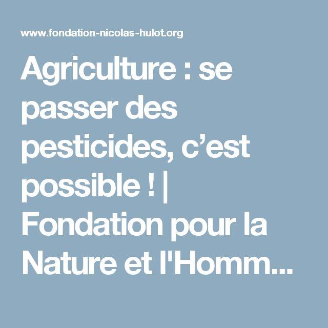 Agriculture : se passer des pesticides, c'est possible ! | Fondation pour la Nature et l'Homme créée par Nicolas Hulot