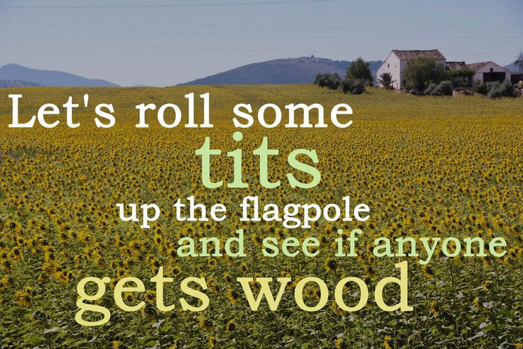 If Malcolm Tucker's Sweary Quotes Were Motivational Posters