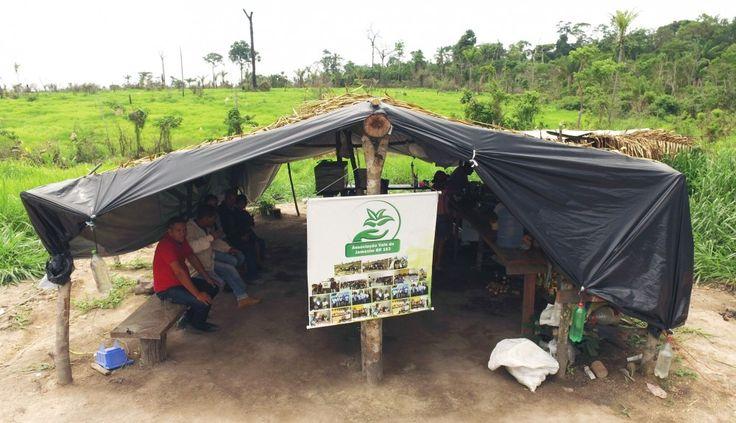 """Próximo à BR-163, no sudoeste do Pará, o acampamento está  numa região de violentos conflitos pela terra, envolvendo, de um lado, madeireiros e grileiros e, de outro, povos indígenas, comunidades tradicionais e camponeses. Quando a reportagem os visitou, em novembro de 2016, o advogado que assessorava o movimento, Rodolfo Ávila, explicou que """"aquela terra foi arrecadada pelo Incra para reforma agrária, exatamente o que demandam as famílias""""."""
