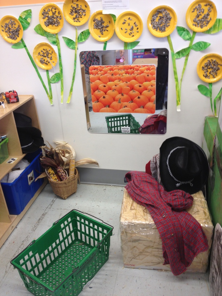 Transform your dramatic play area to reflect the curriculum theme.