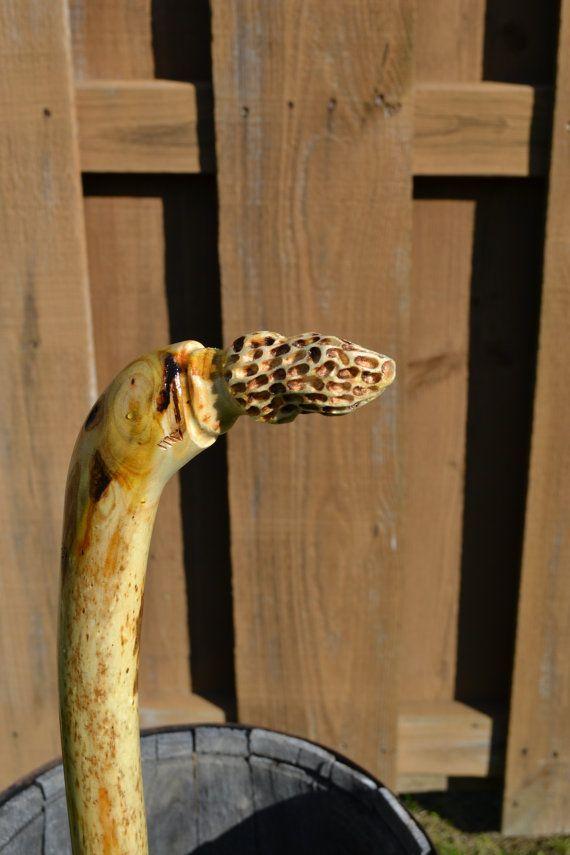 Best morel mushroom hunting sticks images on pinterest