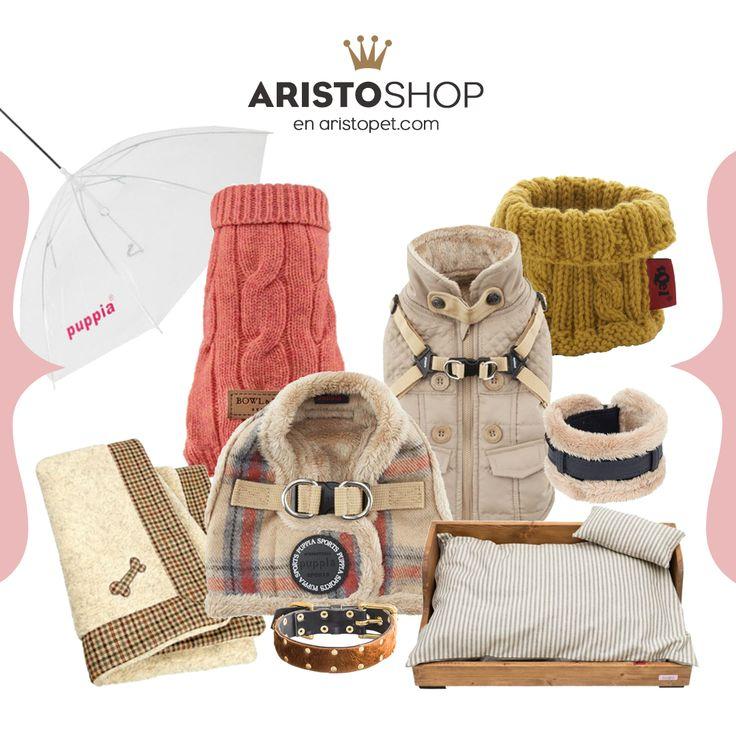 ❄️️Aprovecha el último día del mes obteniendo -5€ de descuento en artículos de invierno❄️️. Aún quedan muchos días de frío y tu ARISTOPERRO quiere mantenerse calentito mientras duerme y cuando sale de paseo. Busca entra la gran selección de jerseys, camas, mantas, abrigos, collares, etc. que podrás encontrar en ARISTOSHOP.  Introduce el código ➡️️ FINDEMES en tu bolsa de compra de ARISTOPET.COM/ARISTOSHOP ¡Y Ahorra en esos productos molones!