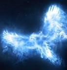 Albus Dumbledore's Patronus, a phoenix