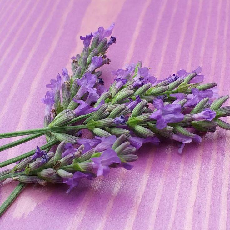 Diy,  New color lavender :)  natural wood pine wood