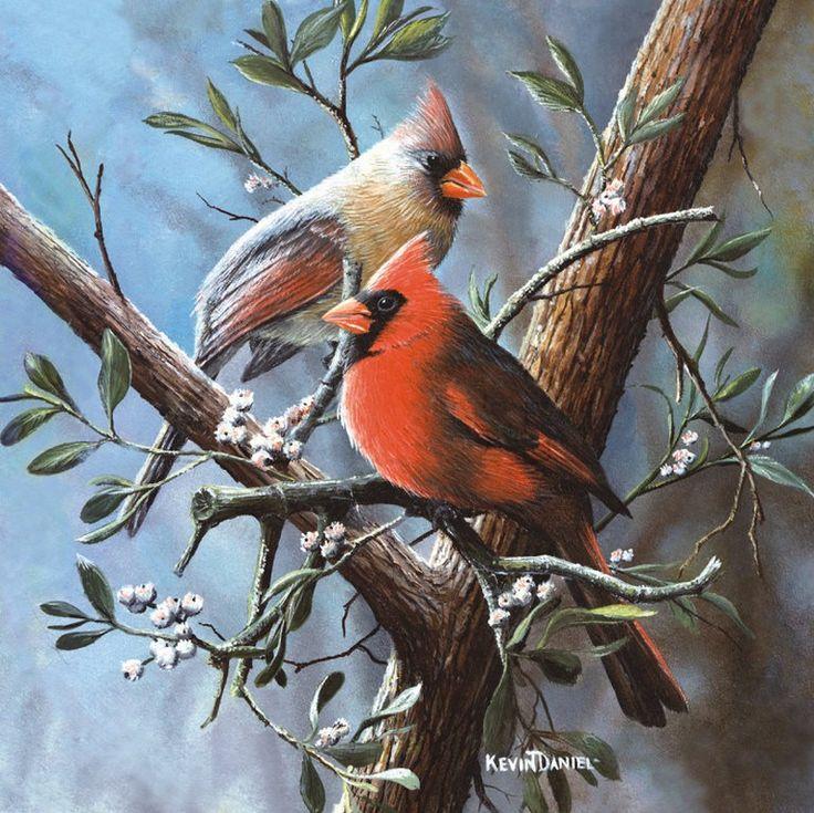 Janene Grende | Красная птица - как огонёк ...