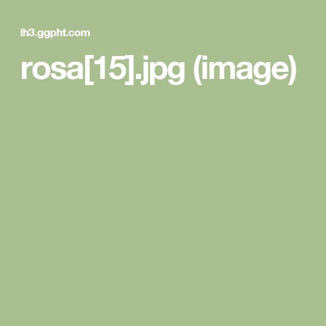 rosa[15].jpg (image)
