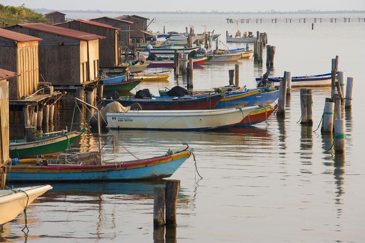 Barche e casoni del Delta del Po, Sacca di Scardovari - Rovigo