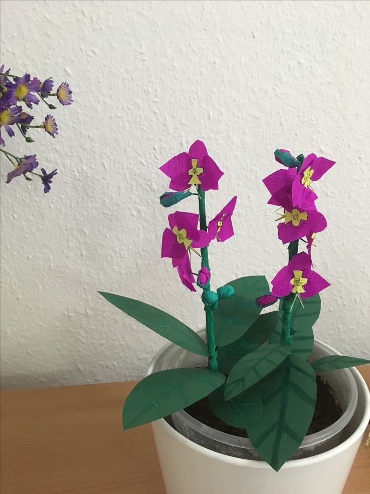 Flower pot with crepe paper