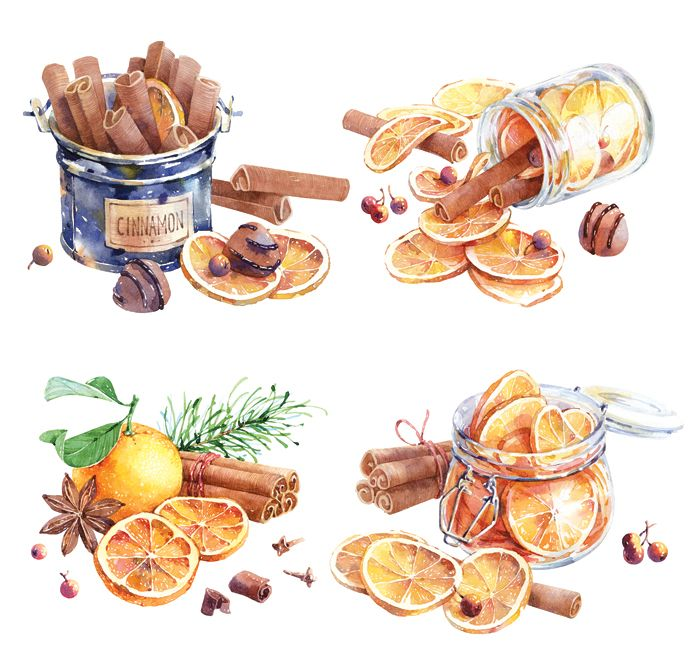 Dried oranges and cinnamon on Behance
