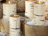 Natural White Birch Poles Logs - contemporary - accessories and decor - - by Save-on-crafts
