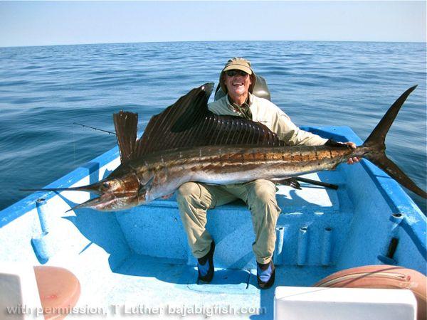 13 best mckenzie river oregon images on pinterest oregon for Surf fishing northern california