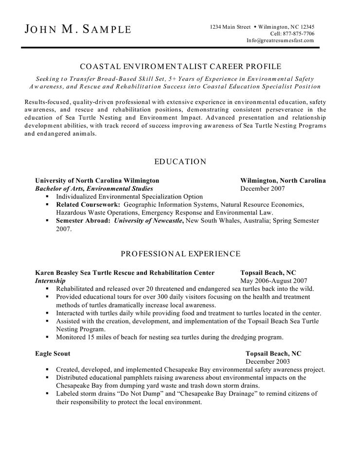 resume profile description examples
