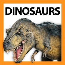 Which immense meat-eating dinosaur had a brain both the size and the shape of a banana? Did you know that Triceratops had 432 teeth? Have we really found dinosaurs with their skin and muscles still intact after 146 million years? And which prehistoric animal still exists today? To these questions, and many more, Dinosaur Fact Files has the answers.