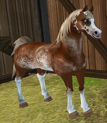 Star Stable Database - 0425