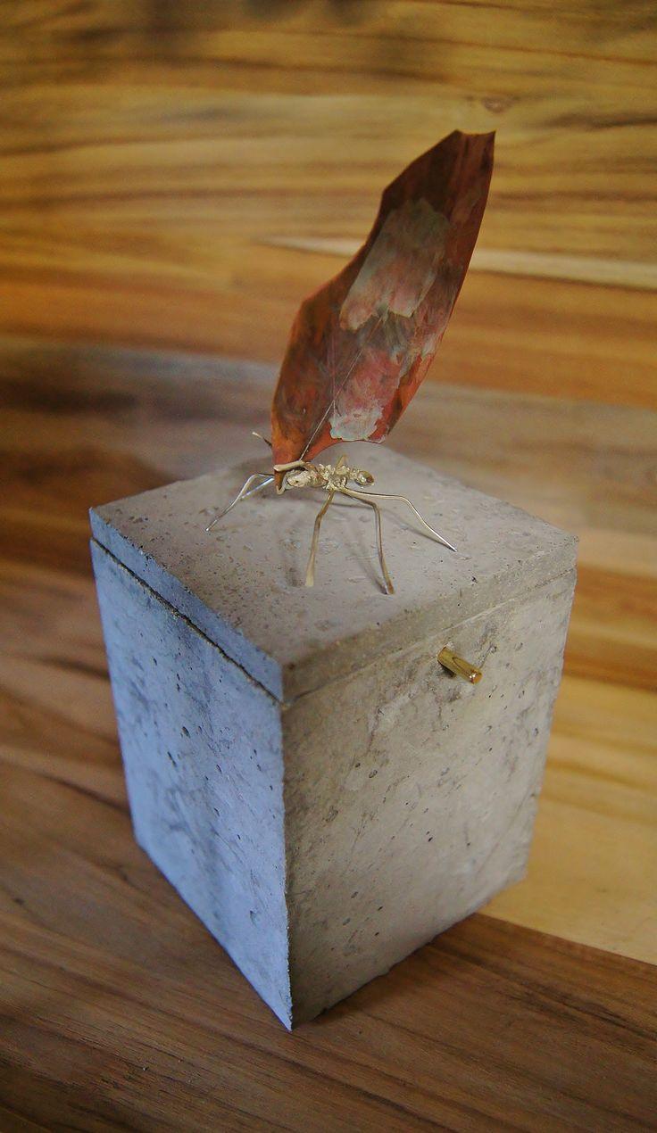 hormiga, plata, cobre, caja concreto