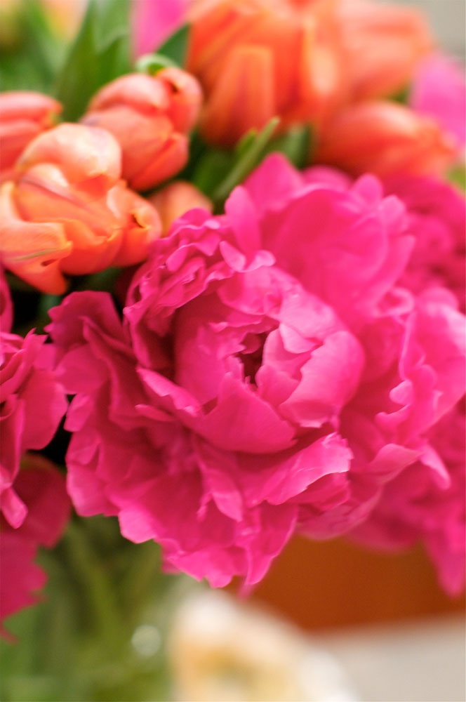 Pink, orange and yellow flowers for Cinco de Mayo party #whhostess