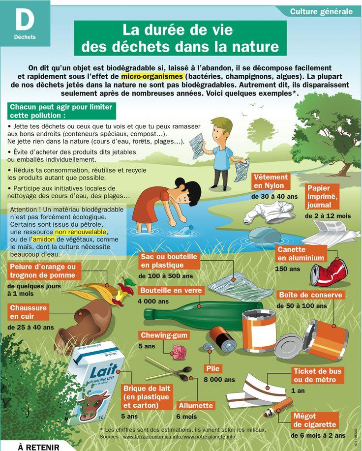 Fiche  La durée de vie des déchets dans la nature
