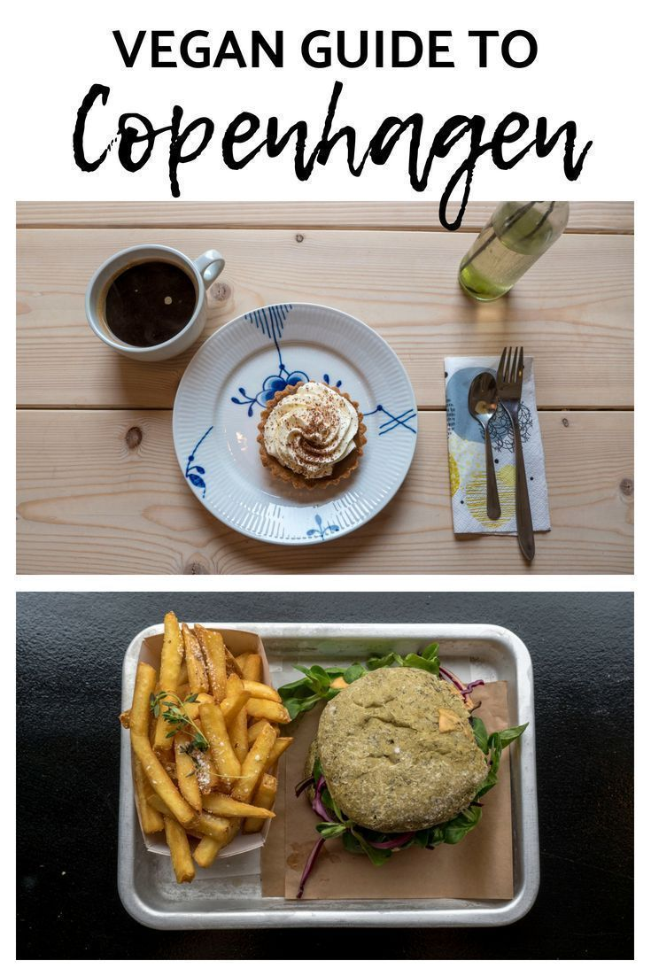 Vegan Copenhagen Eating places: Vegan Journey Information for Copenhagen, Denmark