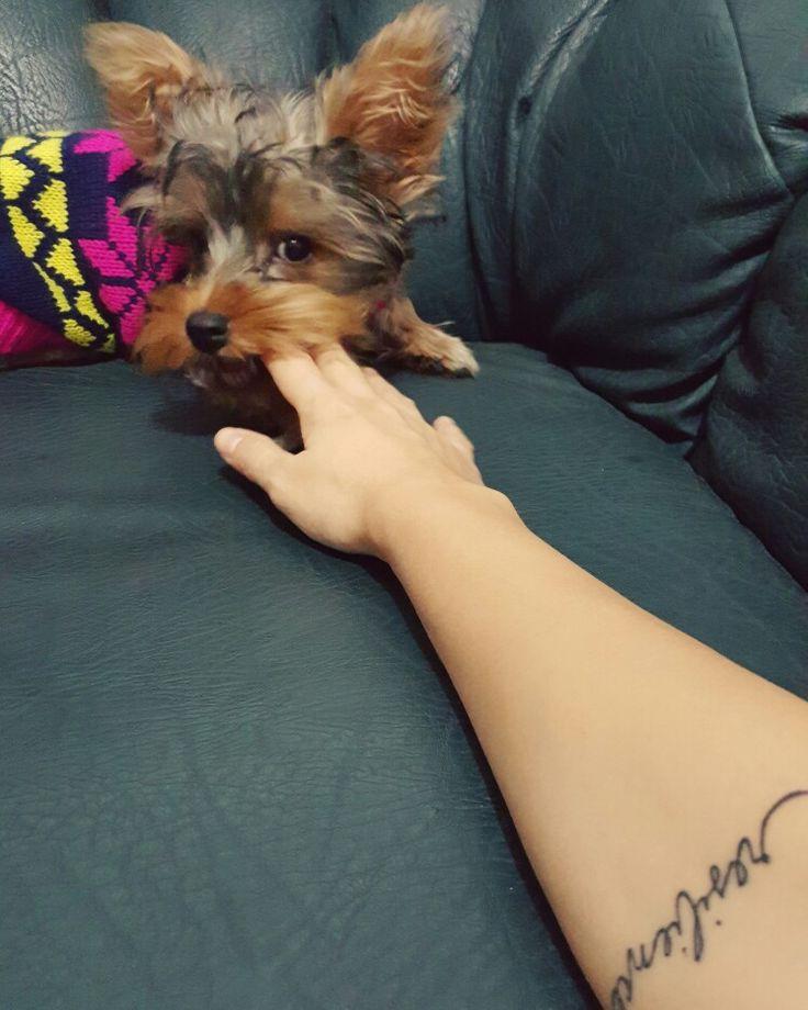 #piky #enjoy #tattoo #resilience