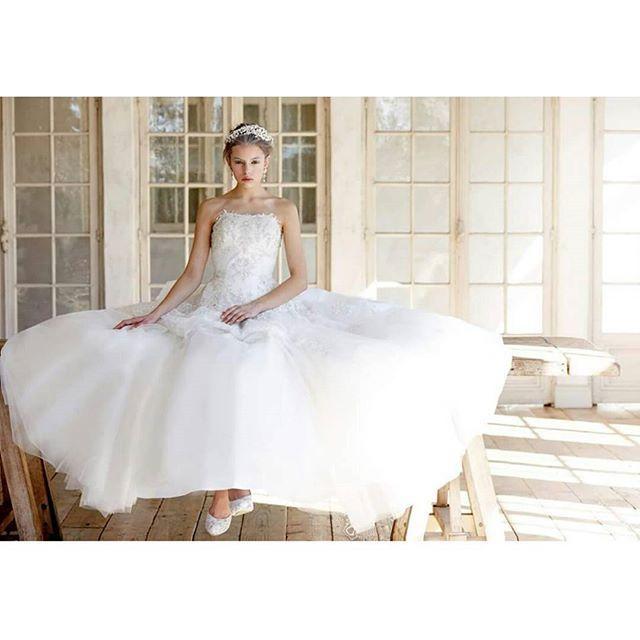 THELOVEL(@the_lovel_costume)より花嫁の可憐さを引き出す、きらびやかさと柔かさを最大限に生かしたドレス。  胸元のビジューとたおやかなドレスの質感は、日本の花嫁様のために作られたTHELOVEL のプラチナムらしい渾身の1着です。  Dress:DP5021 #thelovel #fivestarwedding #wedding  #weddingdress #bridal #プレ花嫁 #プレ花嫁卒業 #花嫁 #結婚式準備 #プレ花婿 #結婚式 #ノートルダム #ファイブスターウェディング #ウェディング#instawedding #instabride #weddingday #ブライダル #marry #2016春婚 #ウエディングドレス #ドレス試着 #2016wedding #2016夏婚 #2016秋婚 #卒花嫁 #weddingtbt#bridetobe