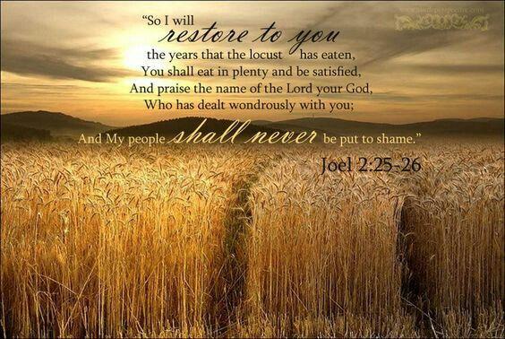 Image result for Joel 2:25 kjv
