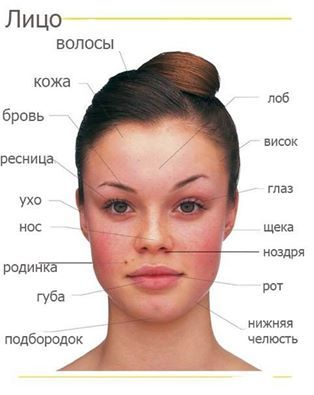 face words in Russian