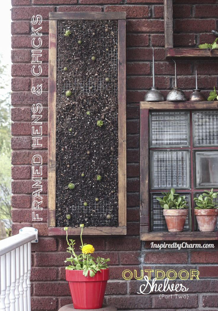 How to make vertical garden: Gardens Ideas, Chick Succulents, Vertical Succulents Gardens, Vertical Gardens, Vertical Planters, Outdoor Shelves, Frames Hens, Wall Gardens, Hanging Gardens