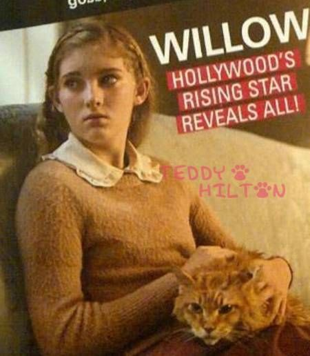 The Hunger Game's cat gets recast to appease the fans! Goes back to ginger!