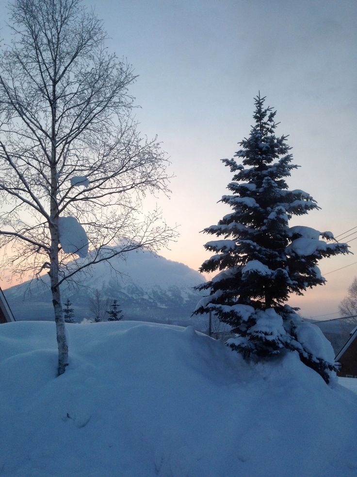 Sunrise in hokkaido