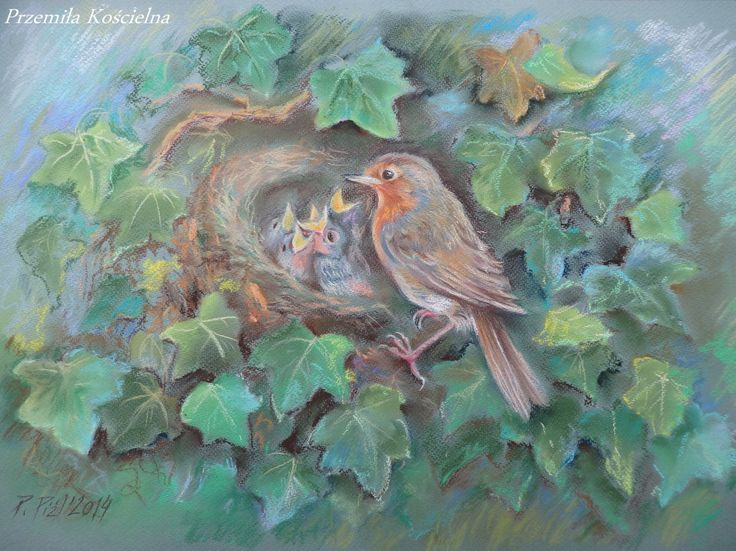 Birds family. Pastel drawing on the green paper.