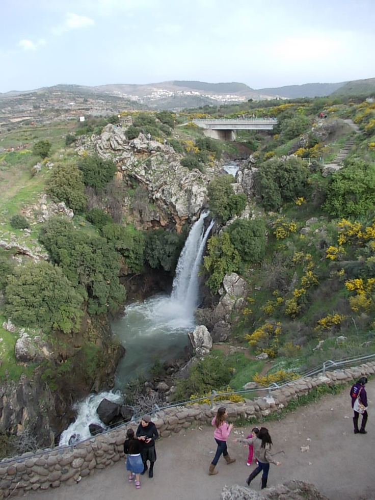 Golan Heights - Sa'ar Falls. After the winter rains.