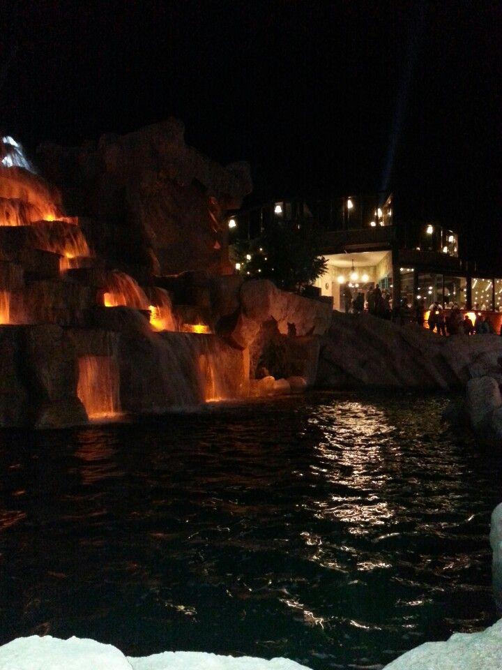 Akşam Eskişehir ışıklarının tepesinde güzel bir kahve içilir... Şelale Park şu şehirde: Eskişehir, Eskişehir