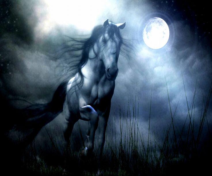 free horse screensavers and - photo #18