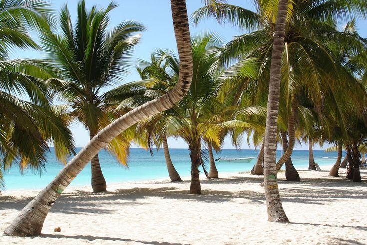 Praia da Ilha Saona, área preservada do Parque Nacional del Este, Punta Cana, Caribe