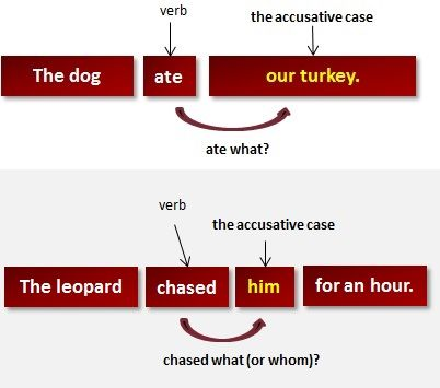 Accusative Case | What Is the Accusative Case?