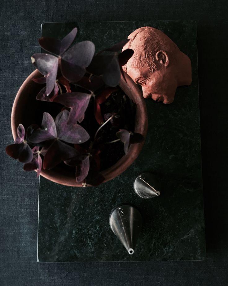Small details. Photo: Sara Eriksson. Instagram: lainiosara