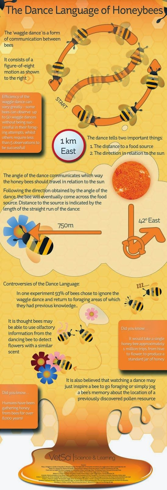 There are some great infographics related to beekeeping out on the net. I have picked my favourites for you to enjoy, add a comment if you ...