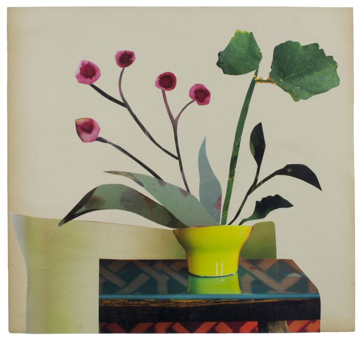 Anke Roder 'Orchid' 2015 collage 28 x 29,5 cm