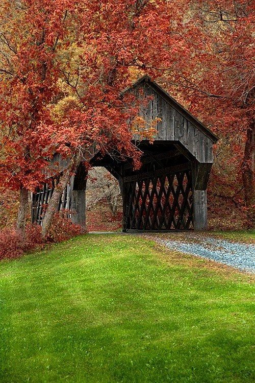 old covered bridge in the fall