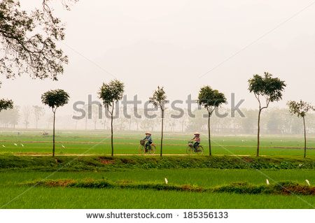 HANOI, VIETNAM - MARCH 30: Two unidentified woman ride bicycle in countryside on…