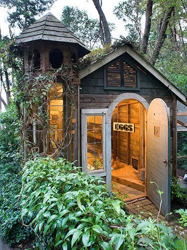 This chicken coop used to be an old shed!