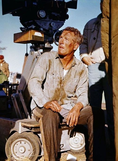 Paul Newman on the set of Cool Hand Luke (1967, dir. Stuart Rosenberg) (via)
