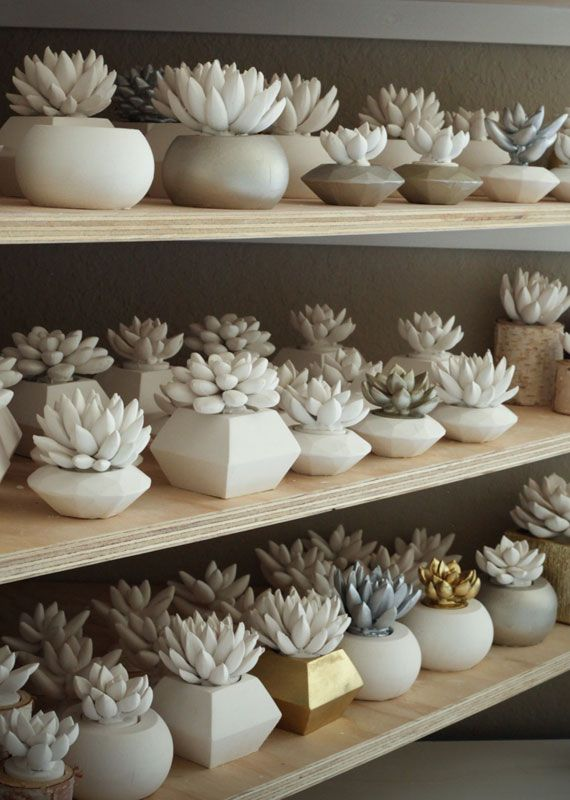 Contemporary succulentsPlants Can, Cement Succulents, Decor Ideas, Diy Fashion, Diy Gift, Cactus Decor Ceramics, Summer Accessories, Indestructable Plants, Design Home