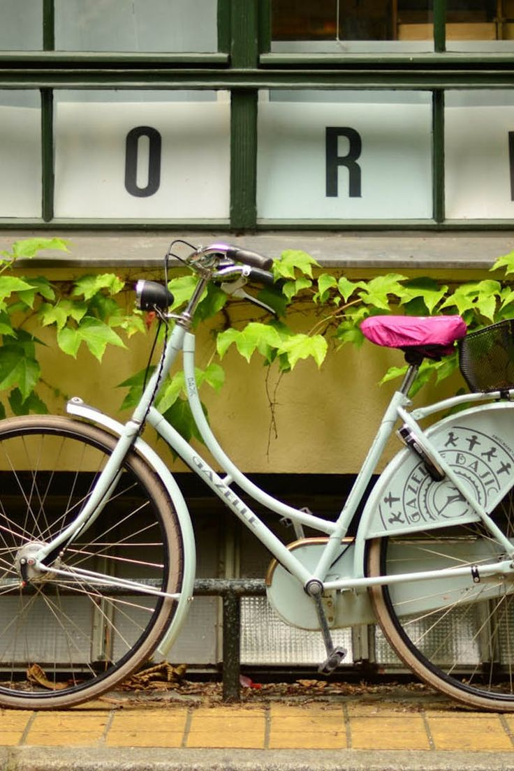 White Commuter Bike Park Near Green Vines\